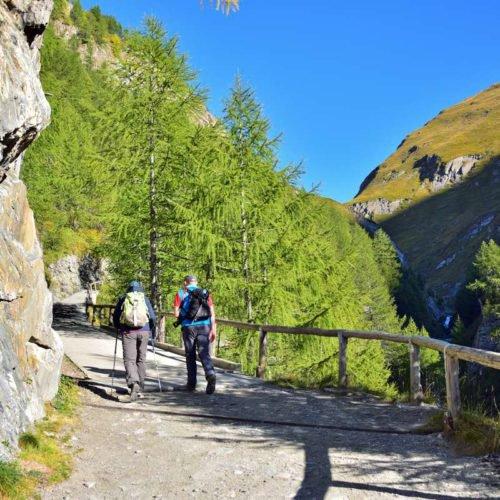 chalet leitner ferienregion gitschberg jochtal (4)