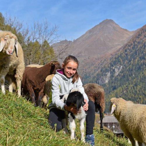 chalet leitner ferienregion gitschberg jochtal (53)
