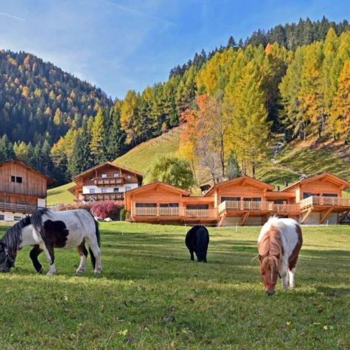 chalet leitner ferienregion gitschberg jochtal (55)