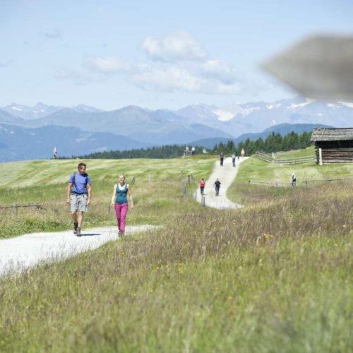 wandern-almenregion-gitschberg-jochtal